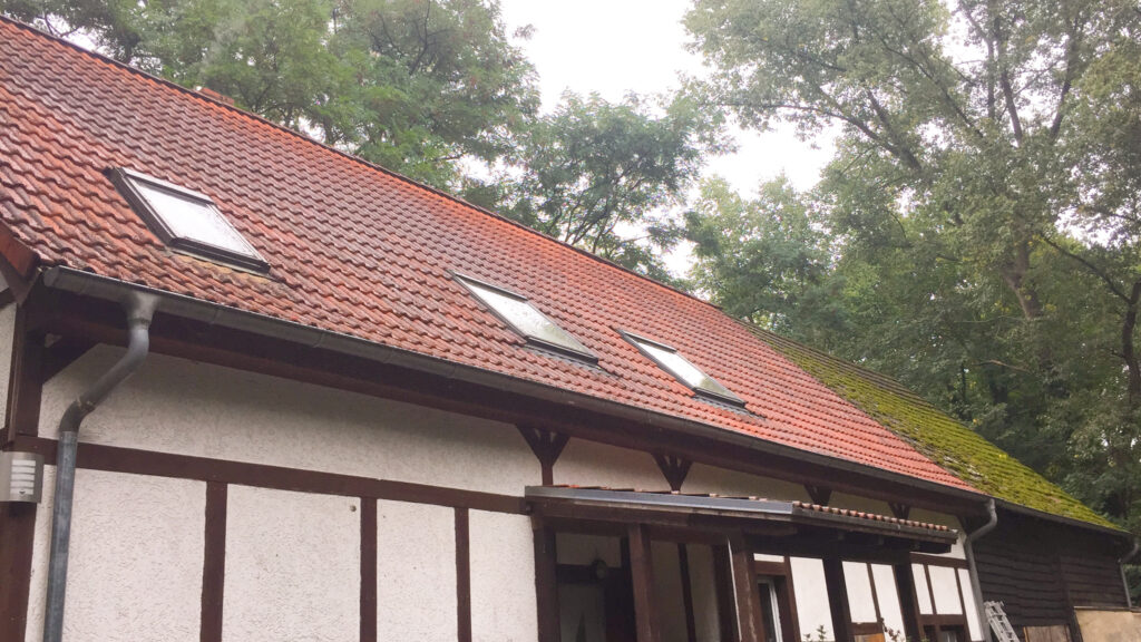 Wie kann man Moos vom Dach entfernen?