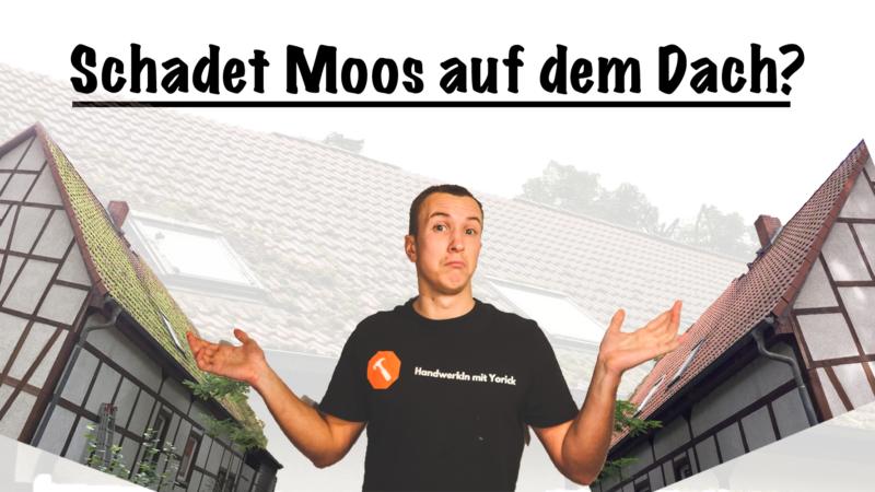 Schadet Moos auf dem Dach?